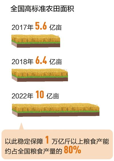 <strong>人民日报头版头条:今年将建成八千万</strong>