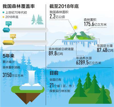 我国森林面积和蓄积30多年保持双增长