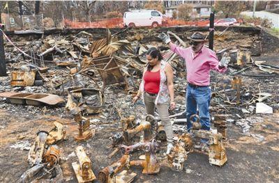 澳大利亚林火肆虐数月损失十分巨大