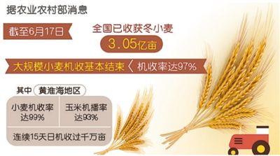 农业农村部:全国已收获冬小麦3.05亿亩,大规模小麦机收基本结束
