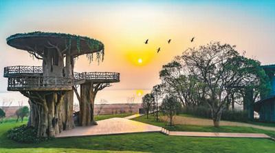 到鄱阳湖体验智慧观鸟