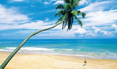 """把斯里兰卡加进""""旅游愿望清单""""(国家人文地理)"""