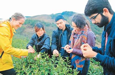 中国入境游的春天来了 多项举措成效初显