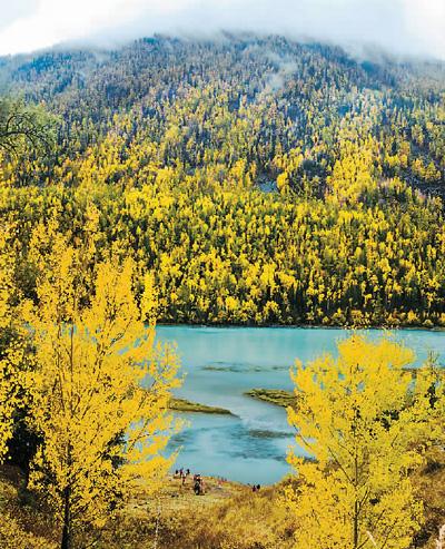 新疆喀纳斯:秋景如画(图)