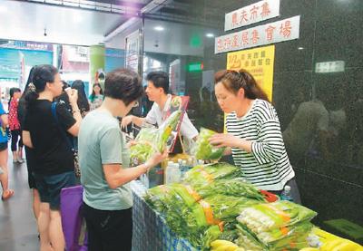 小农市集带给台湾食客清新感(看台湾)