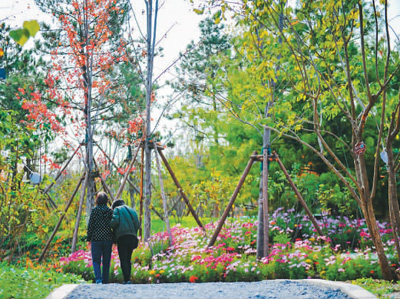 北京:森林公园带来生态福利