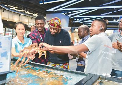 """非洲11国创业者来华""""取经"""":中国经验更接近非洲现实"""