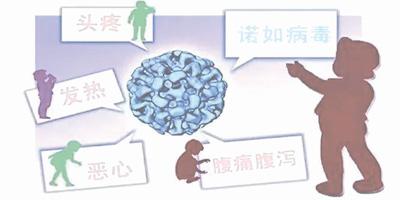 警惕诺如病毒发作风险 卫生防护