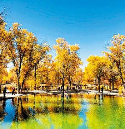 植树季,一条绿色长城在延伸