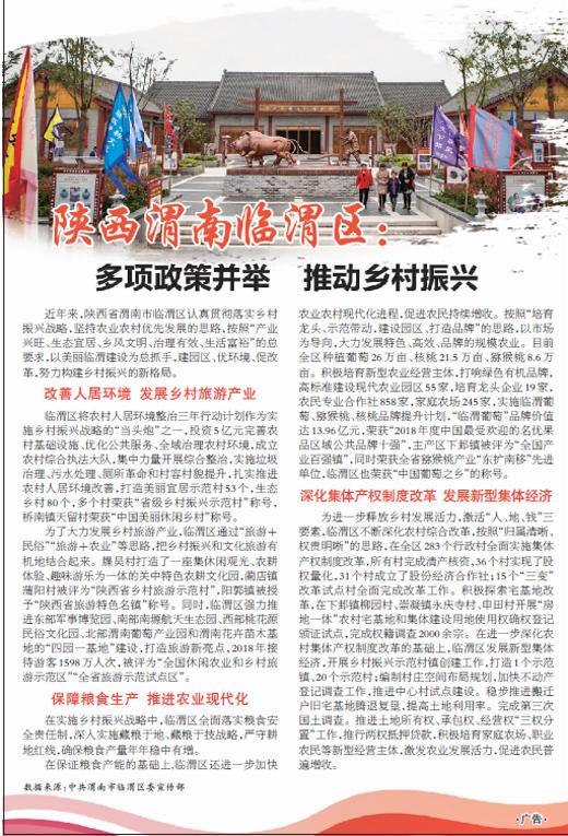 陕西渭南临渭区:多项政策并举推动乡村振兴