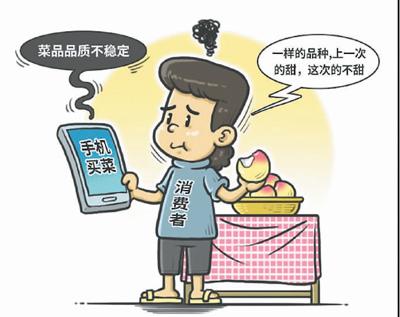 """手机买菜迅速""""圈粉"""""""