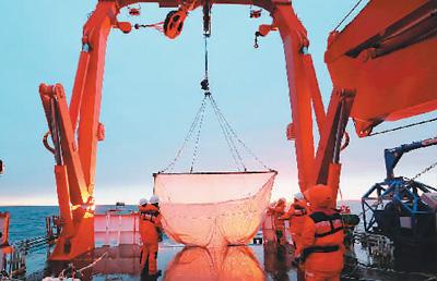 南极考察队调查宇航员海磷虾