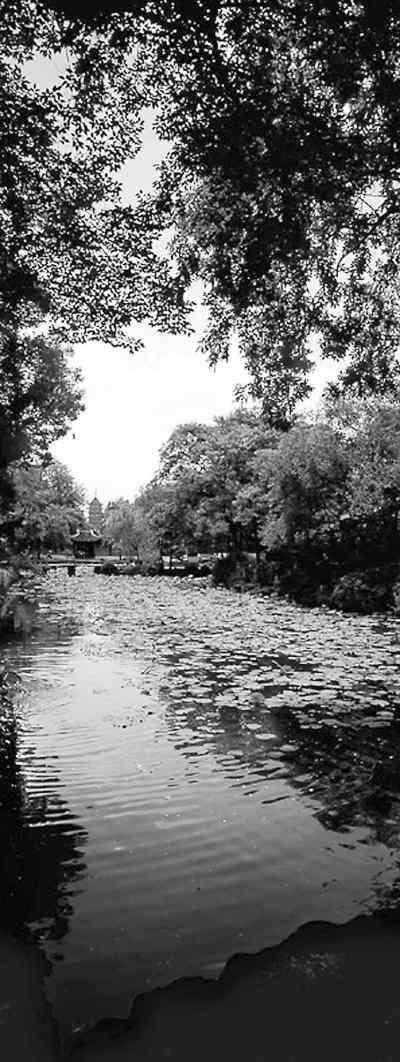古典园林里的古典呢喃   苏州园林闻名于世,拙政园,留园,狮子林等9