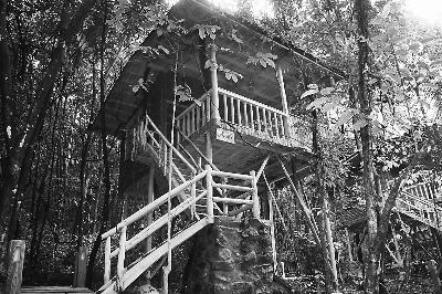 森林木屋图片大全古风