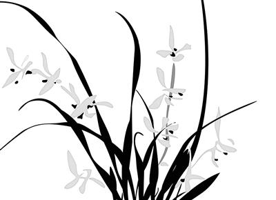 兰花画法步骤图解