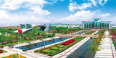 开放红利再度给力青岛 - 人在上海    - 中国新闻画报