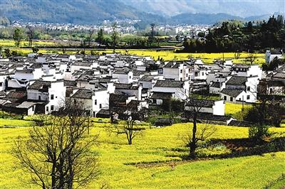 安徽乡村田园风景