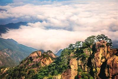 深秋季节的安徽黄山风景区色彩绚丽,风景迷人,远山,奇松,怪石在云海