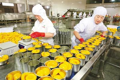 出口水果罐头生产忙