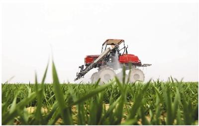 农业经济发展|农业将成中国经济发展新引擎(国际论道)