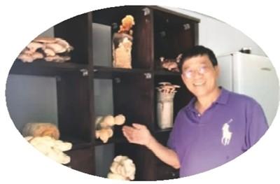 """在南半球种""""亚洲蘑菇"""""""