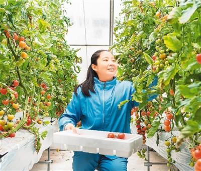 力推科技兴农,打造智慧生态农业