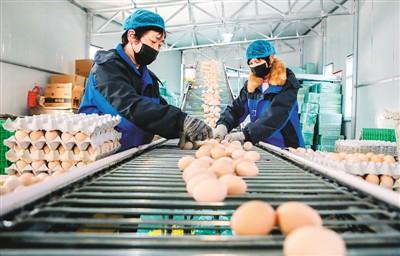 中国经济供需循环愈加畅通(锐财经·一手抓防疫一手促发展(29))