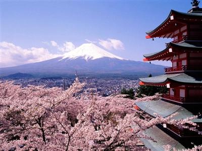 东京去富士山一日游
