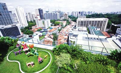 新加坡大楼上的屋顶花园